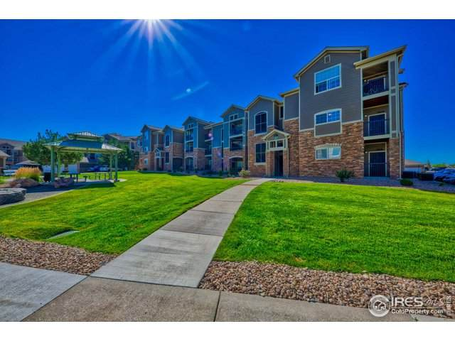 1425 Blue Sky Cir #202, Erie, CO 80516 (MLS #920864) :: Hub Real Estate