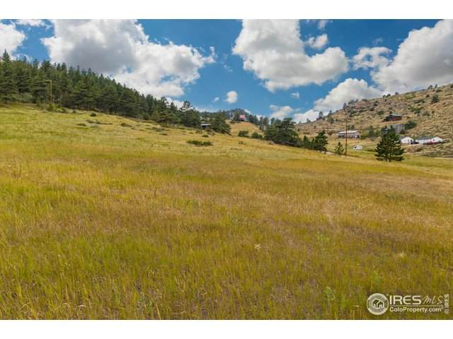 671 Eiger Rd, Livermore, CO 80536 (MLS #920886) :: Wheelhouse Realty