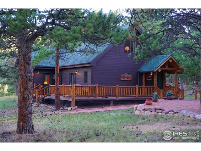 301 Whiz Bang Rd, Allenspark, CO 80510 (#921304) :: Kimberly Austin Properties