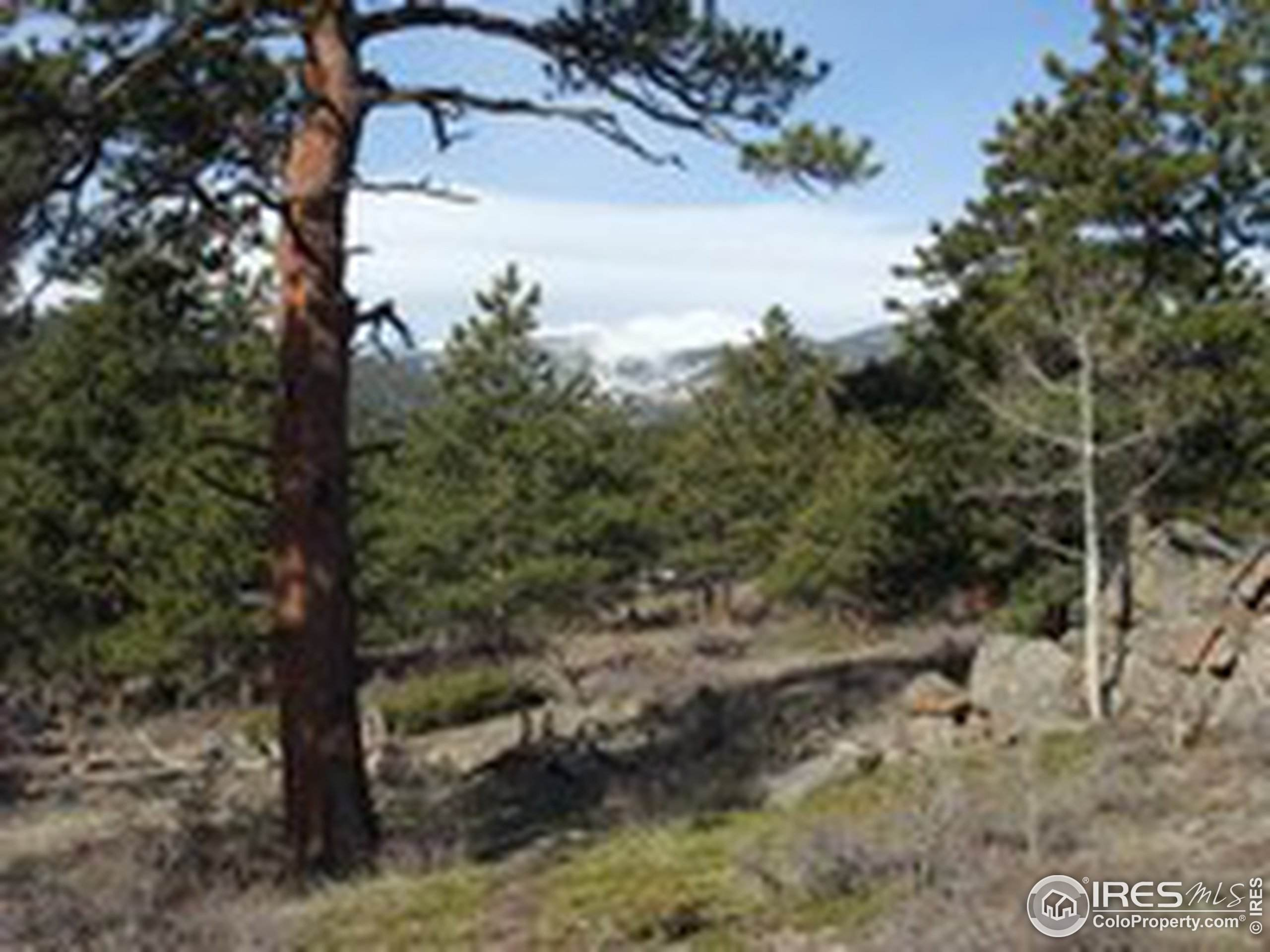 721 Waterglen Dr H-130, Fort Collins, CO 80524 (MLS #921447) :: Fathom Realty