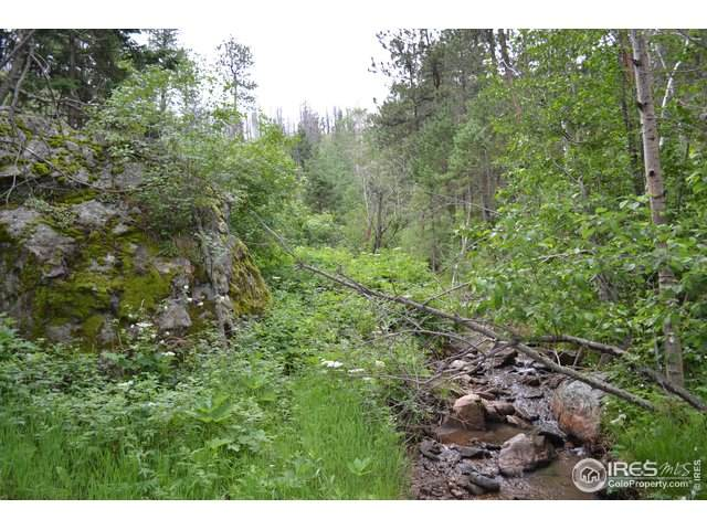 0 Old Camp Rd, Bellvue, CO 80512 (MLS #921491) :: Downtown Real Estate Partners