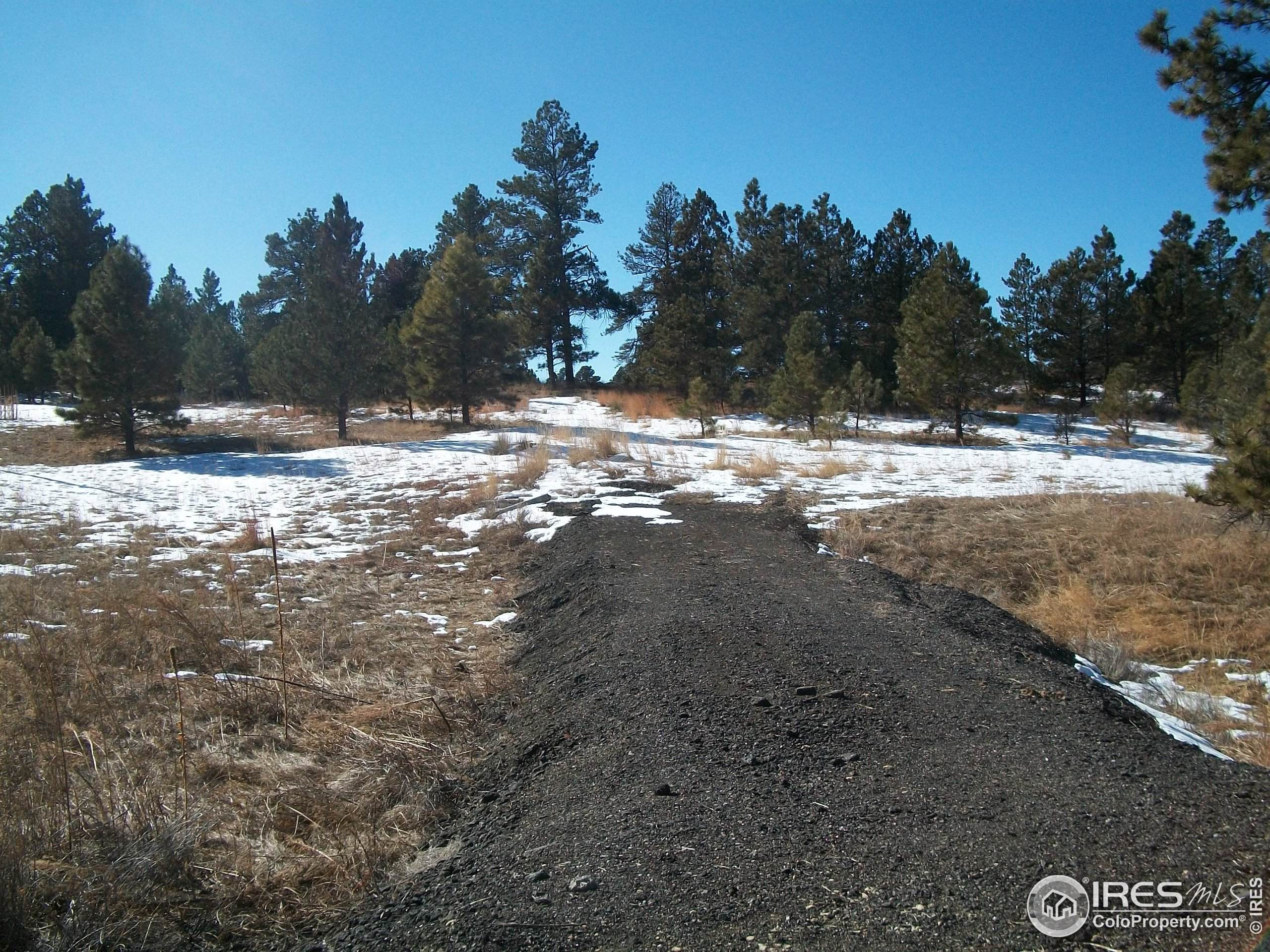 344 Red Bud Ct, Eaton, CO 80615 (MLS #921493) :: 8z Real Estate