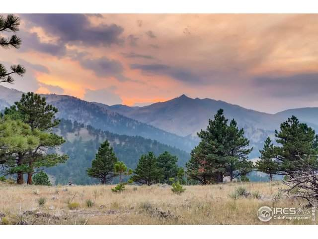 8322 W Fork Rd, Boulder, CO 80302 (MLS #921675) :: 8z Real Estate