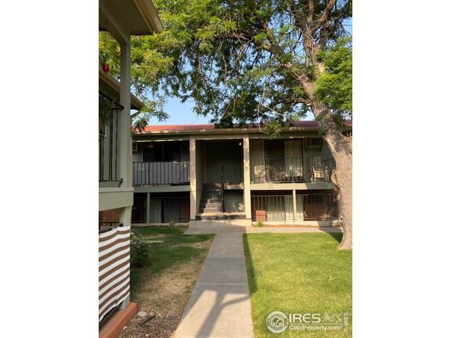 419 S Impala Dr #11, Fort Collins, CO 80521 (MLS #922214) :: Fathom Realty