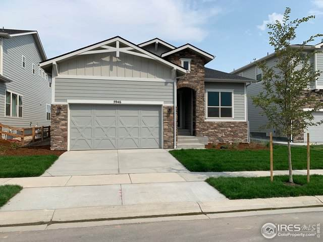 5946 Espalier Ln, Fort Collins, CO 80528 (#922325) :: Kimberly Austin Properties