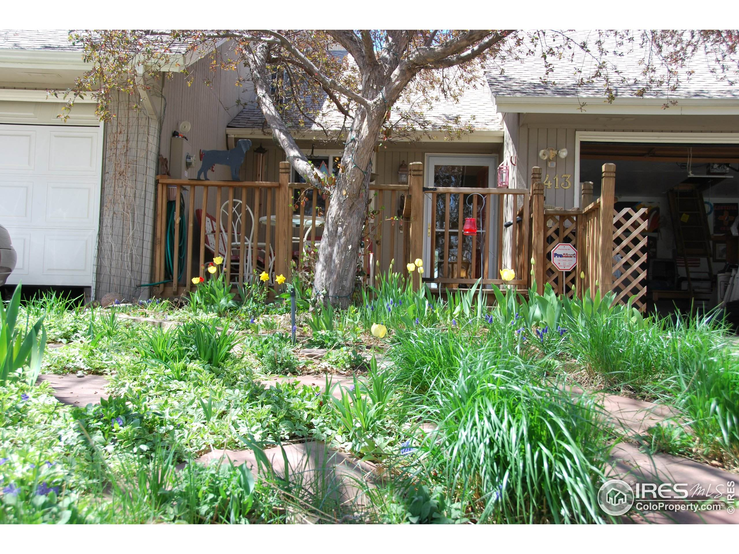 1853 Rannoch Dr, Longmont, CO 80504 (MLS #922502) :: 8z Real Estate