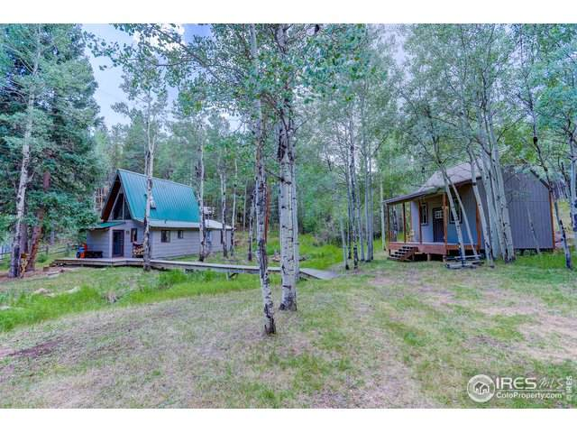 479 Deer Rd, Evergreen, CO 80439 (#922679) :: Kimberly Austin Properties