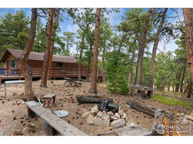 17256 Highway 7, Allenspark, CO 80510 (#922696) :: James Crocker Team