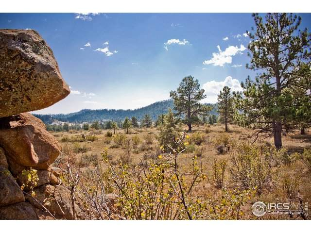 480 Lizard Head Mountain Dr, Livermore, CO 80536 (MLS #922774) :: Kittle Real Estate