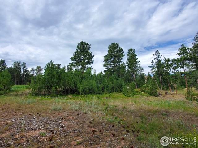 2707 Fox Acres Dr, Red Feather Lakes, CO 80545 (MLS #922866) :: 8z Real Estate