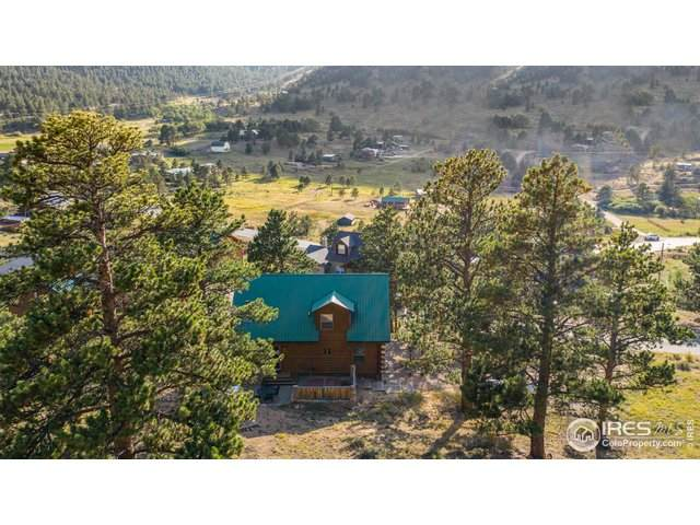 1910 Silver Tree Ln, Estes Park, CO 80517 (#923216) :: James Crocker Team