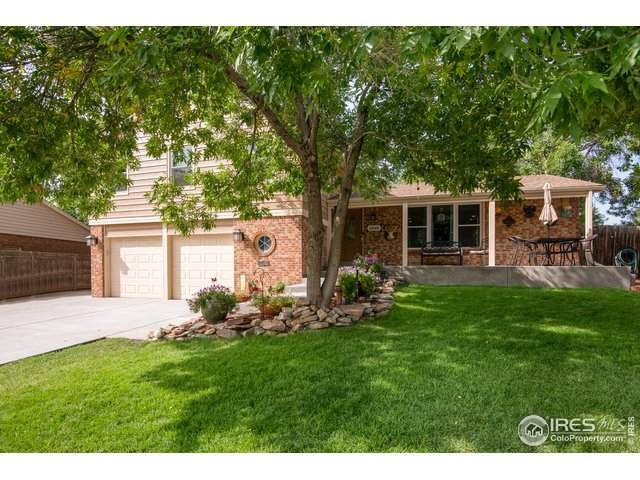 12365 Columbine Ct, Thornton, CO 80241 (MLS #924261) :: 8z Real Estate