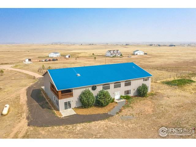 389 Big Sky Pl, Wellington, CO 80549 (MLS #924450) :: Jenn Porter Group