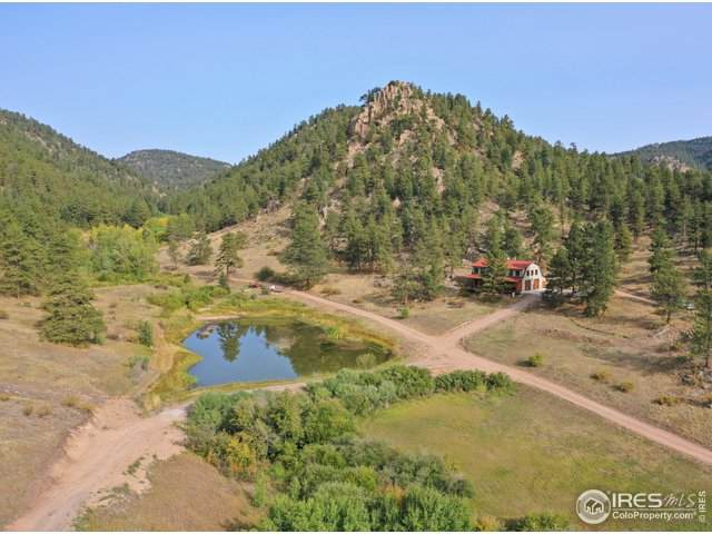 413 Meadowdale Ln, Estes Park, CO 80517 (MLS #925311) :: Colorado Home Finder Realty