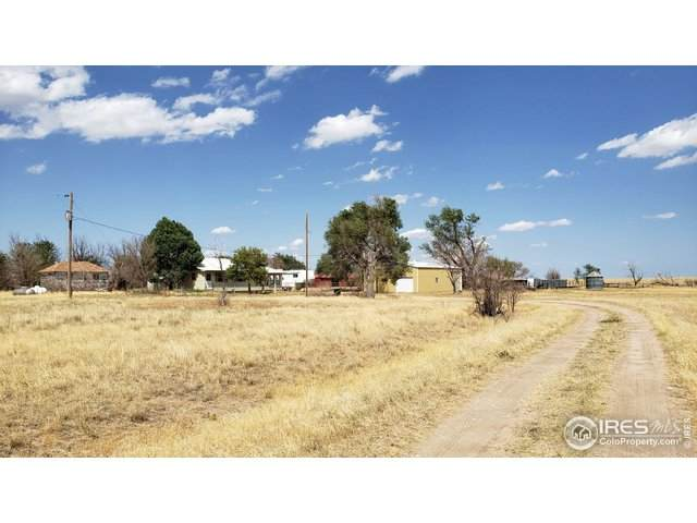51292 County Road Ee - Photo 1