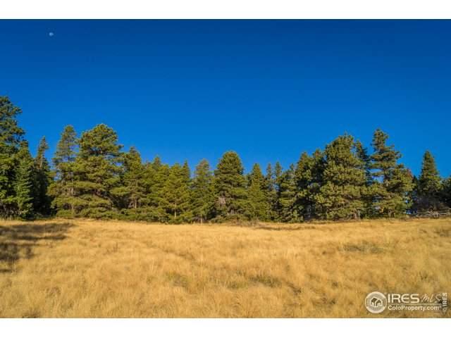 0 Switzerland Trl, Boulder, CO 80302 (#925968) :: Peak Properties Group