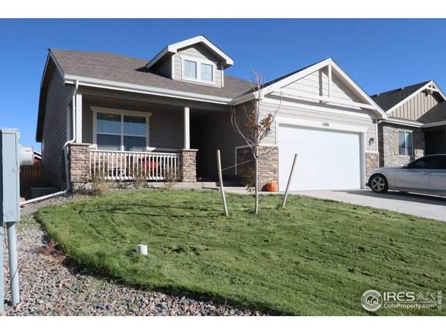 1203 Bison Way, Wiggins, CO 80654 (MLS #926531) :: The Sam Biller Home Team