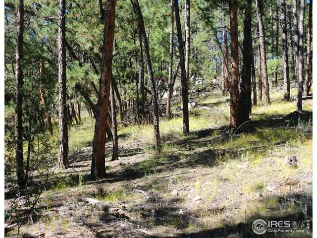 0 Spruce Mountain Dr, Drake, CO 80515 (MLS #926905) :: Downtown Real Estate Partners
