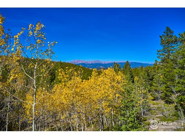 0 Lupine Pl, Black Hawk, CO 80422 (#927071) :: The Margolis Team