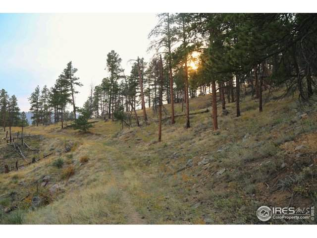 Address Not Published, Bellvue, CO 80512 (MLS #927086) :: Wheelhouse Realty