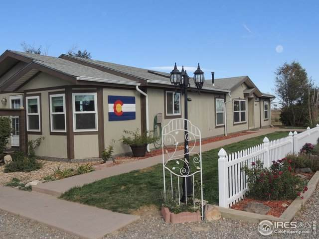 10141 County Road 14 1/2, Fort Lupton, CO 80621 (#927770) :: Realty ONE Group Five Star