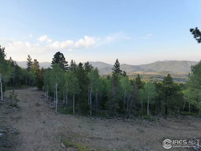700 Front Neck Mine Rd, Central City, CO 80427 (MLS #928301) :: 8z Real Estate