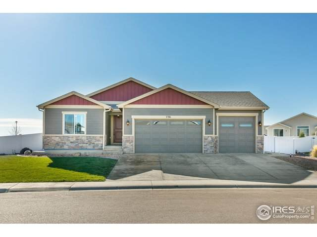736 Singletree Ln, Eaton, CO 80615 (#928708) :: The Brokerage Group