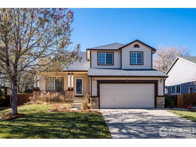 669 Nelson Park Dr, Longmont, CO 80503 (MLS #928819) :: Jenn Porter Group