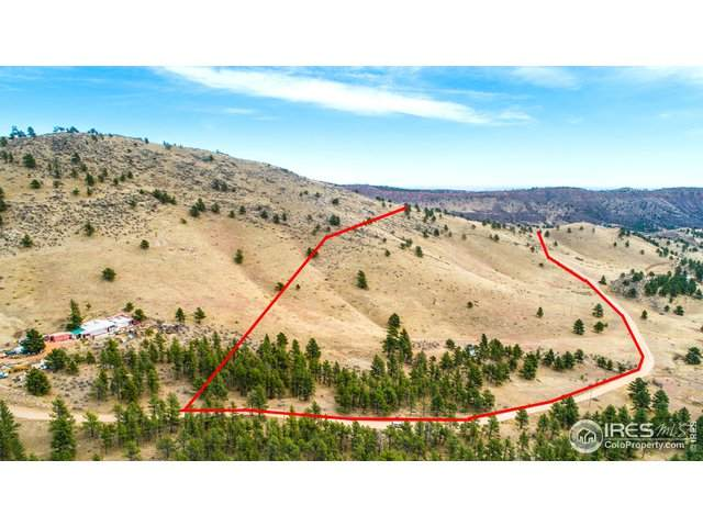 849 Blue Mountain Trl, Lyons, CO 80540 (MLS #928933) :: Jenn Porter Group