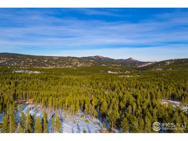 13 Juneau Cir, Nederland, CO 80466 (#928944) :: Kimberly Austin Properties