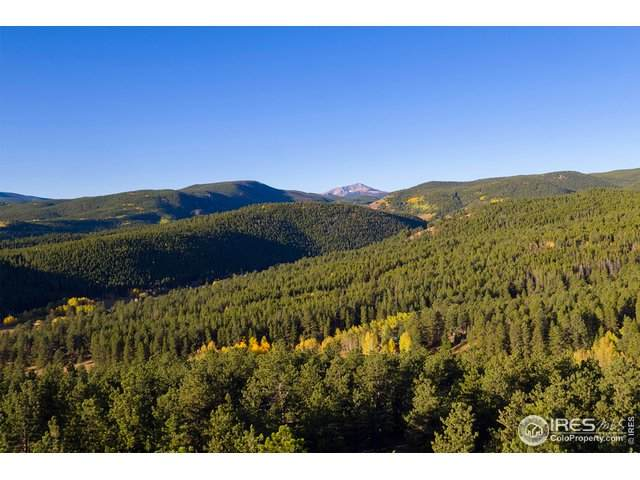 19 Ridge View Rd, Nederland, CO 80466 (#928945) :: Kimberly Austin Properties