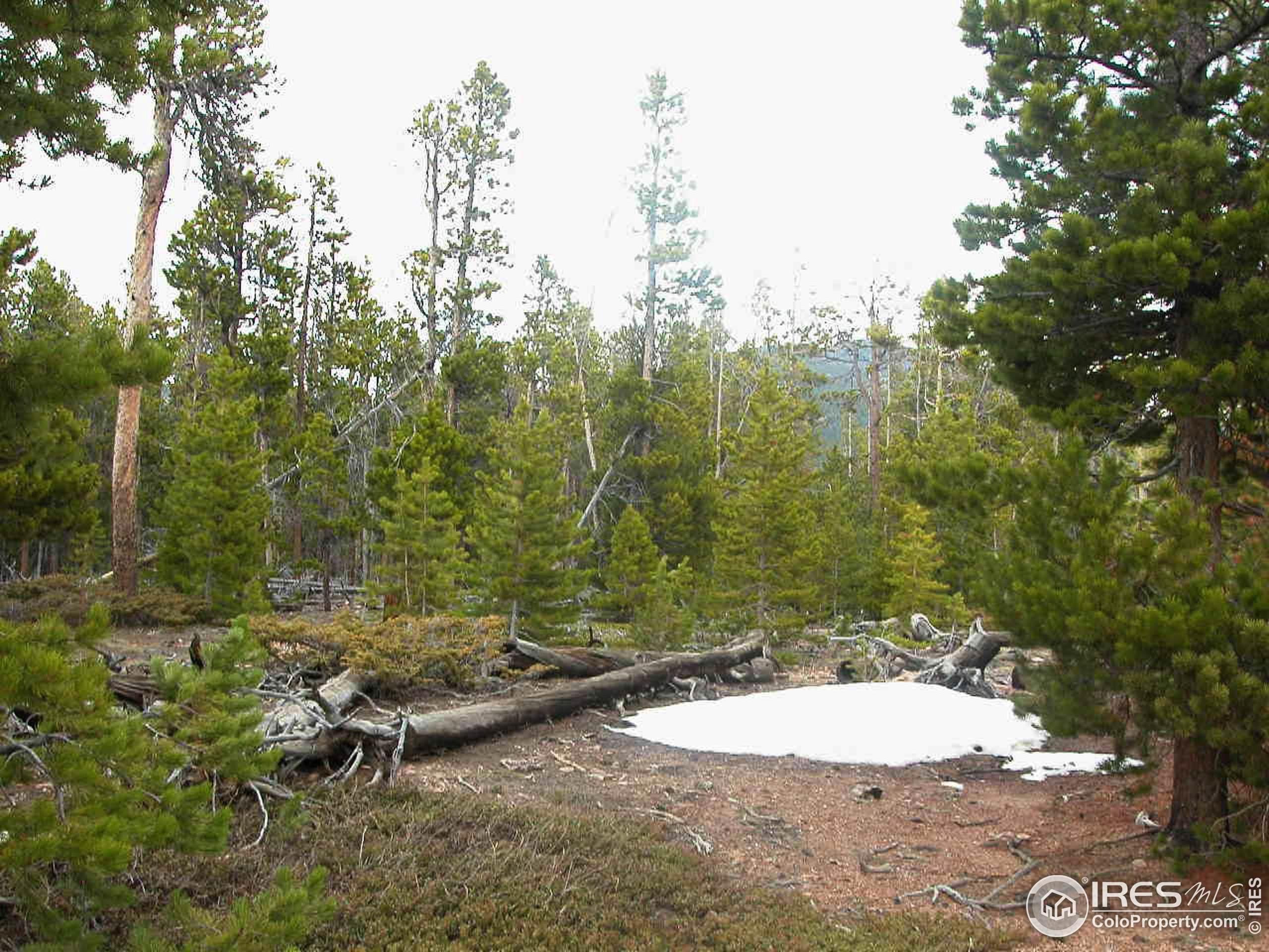169 N 9th Ave, Brighton, CO 80601 (MLS #928948) :: Hub Real Estate