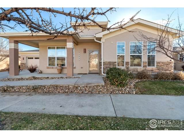 1262 Inca Dove Cir - Photo 1