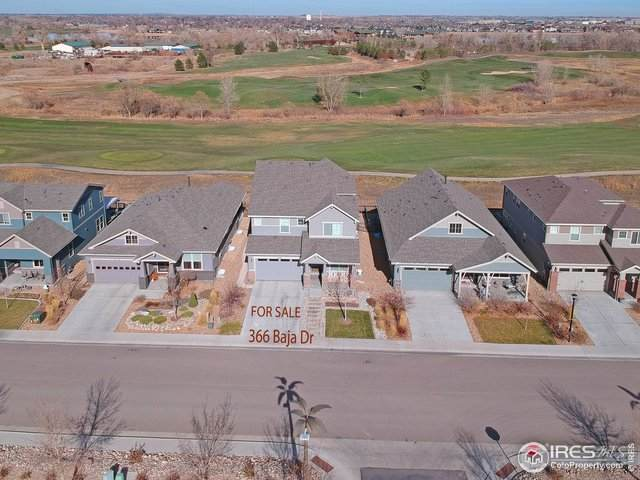 366 Baja Dr, Windsor, CO 80550 (MLS #929171) :: HomeSmart Realty Group