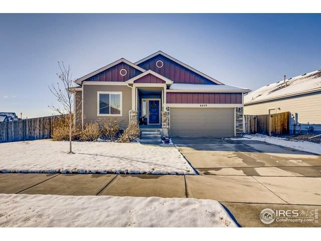 6629 Catalpa Cir, Frederick, CO 80530 (MLS #929274) :: 8z Real Estate