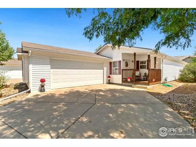 834 Vitala Dr, Fort Collins, CO 80524 (MLS #929397) :: 8z Real Estate