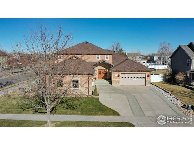 100 Cobble Dr, Windsor, CO 80550 (#930058) :: Realty ONE Group Five Star