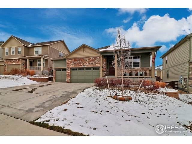 2268 Stonefish Dr, Windsor, CO 80550 (MLS #930415) :: Tracy's Team