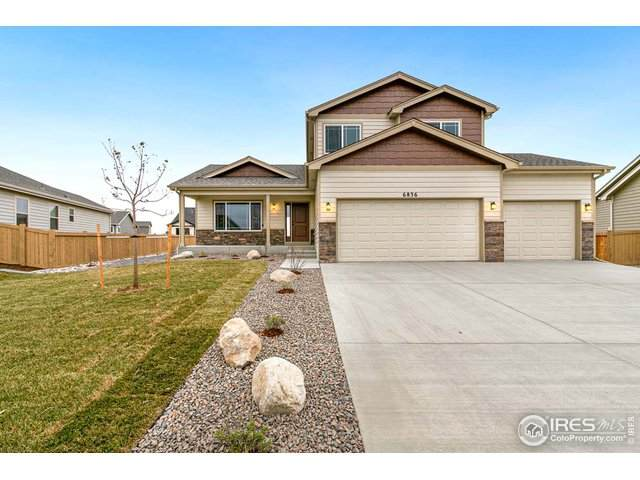 7026 Cattails Dr, Wellington, CO 80549 (#930487) :: Realty ONE Group Five Star