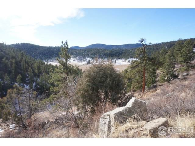 750 Pine Tree Dr, Estes Park, CO 80517 (MLS #930521) :: Hub Real Estate