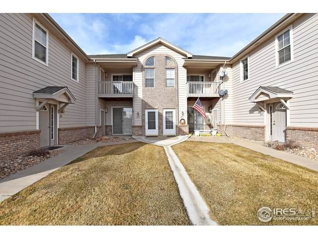 5151 29th St #204, Greeley, CO 80634 (MLS #931084) :: Jenn Porter Group
