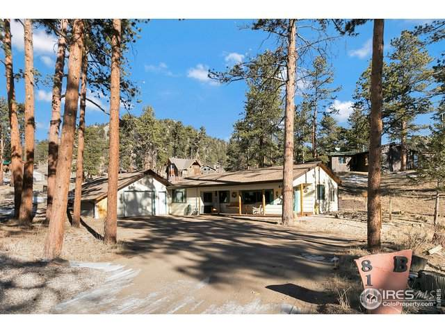 810 Larkspur Rd, Estes Park, CO 80517 (MLS #931149) :: Tracy's Team