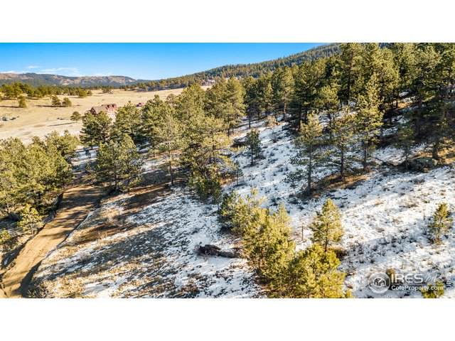 1004 Snow Top Dr, Drake, CO 80515 (MLS #931211) :: HomeSmart Realty Group