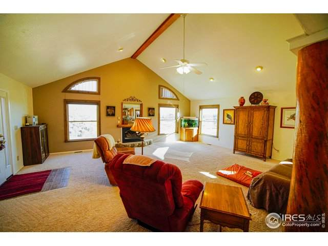 1105 Mount Moriah Rd, Livermore, CO 80536 (MLS #931230) :: 8z Real Estate