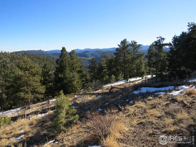 0 Switzerland Trl, Boulder, CO 80302 (MLS #931535) :: Hub Real Estate