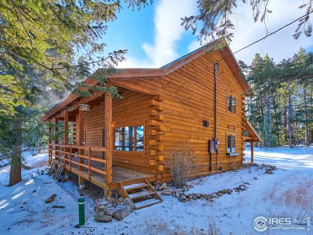 110 Ponderosa Way, Nederland, CO 80466 (MLS #931604) :: 8z Real Estate