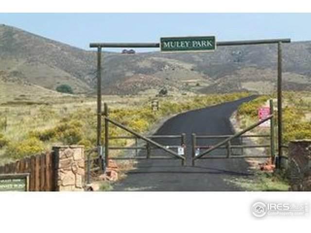 0 Gold Mine Rd, Loveland, CO 80538 (MLS #931781) :: 8z Real Estate