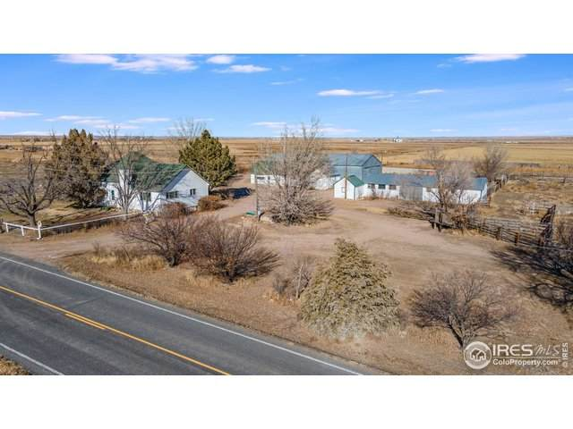 18781 County Road 88, Pierce, CO 80650 (MLS #932062) :: Downtown Real Estate Partners