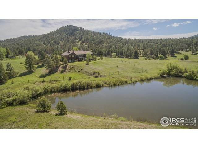 1593 Dry Gulch Rd, Estes Park, CO 80517 (MLS #932063) :: Downtown Real Estate Partners