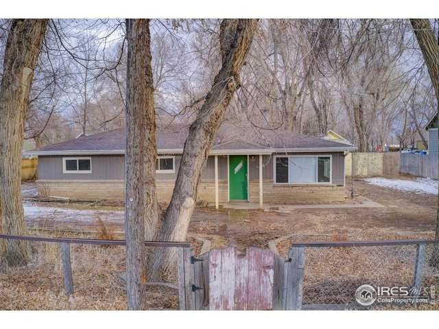 526 N Hollywood St, Fort Collins, CO 80521 (MLS #932955) :: Downtown Real Estate Partners